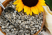 FREE sunflower seeds из г.Лондон